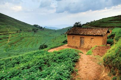 הבתים משתלבים בצורה מושלמת בנוף - בנייה ירוקה כברירת מחדל מלבני בוץ (צילום: אודי גורן)