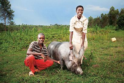 כשהרכוש של האנשים כה מצומצם, גם חזיר מקבל משמעות ומצטרף לתצלום (צילום: אודי גורן)