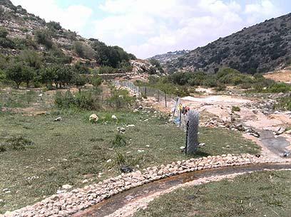 חלקות מגודרות בשמורה, שהן חלק מהשתלטות פלסטינית עליה והפרת האיזון הטבעי  (צילום: אנשי איגוד ערים לאיכות סביבה) (צילום: אנשי איגוד ערים לאיכות סביבה)