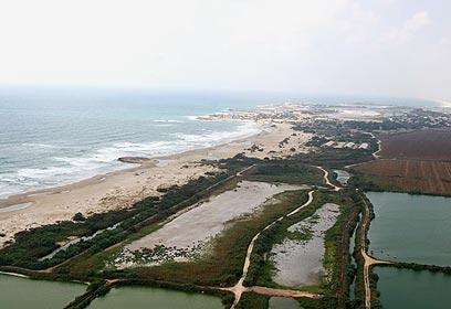 שטח בריכות הדגים עליהם מתוכנן כפר הנופש (צילום: דן חמיצר) (צילום: דן חמיצר)