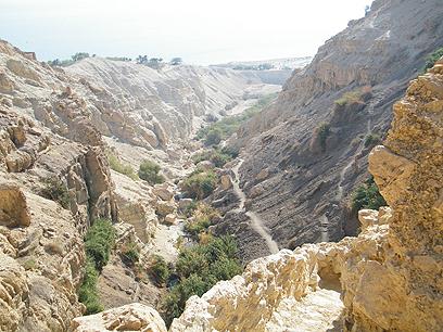 הנוף בדרך למערה הסודית (צילום: ערן גל-אור) (צילום: ערן גל-אור)
