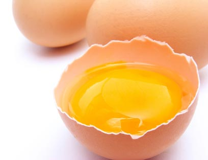 ביצים. החלבון האיכותי ביותר (צילום: shutterstock) (צילום: shutterstock)