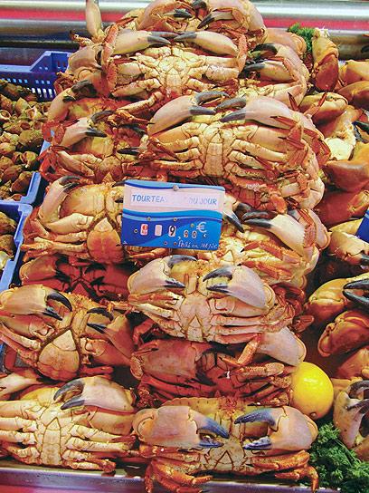 קרנבל של פירות ים וסרטנים בנורמנדי (צילום: גיל אטלן) (צילום: גיל אטלן)