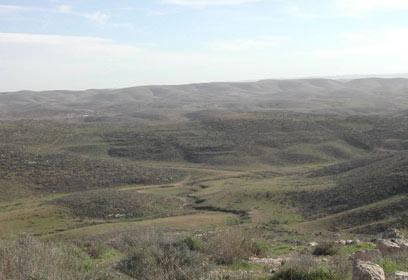 """(צילום: מכון דש""""א, החברה להגנת הטבע ) (צילום: מכון דש"""