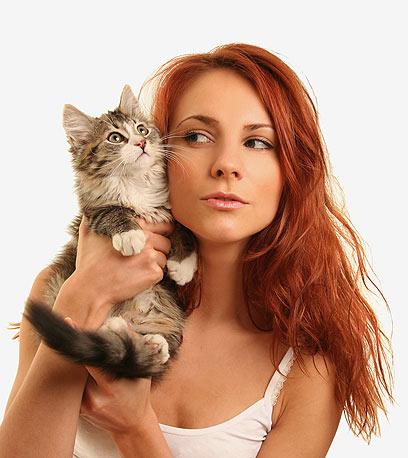 חובבת חתולים? אולי תוכלי לגור כאן (צילום: Shutterstock) (צילום: Shutterstock)