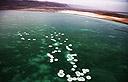ים המלח (צילום: AFP)