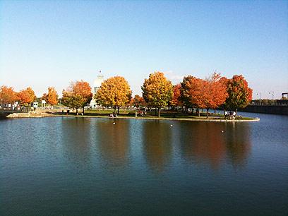 צבעי שלכת בנהר סנט לורנס (צילום: סיון רביב) (צילום: סיון רביב) (צילום: סיון רביב)