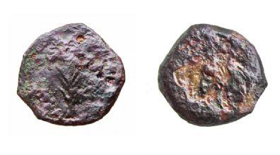 המטבעות שהוטבעו לאחר מותו של הורדוס (צילום: ולדימיר נייחין) (צילום: ולדימיר נייחין)