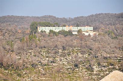 מלון יערות הכרמל וסביבתו  (צילום: רונית סבירסקי) (צילום: רונית סבירסקי)