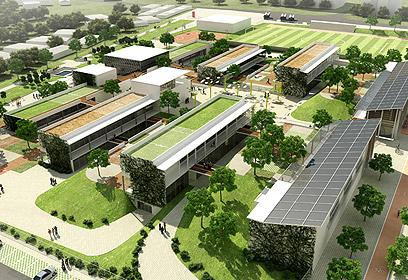"""הדמייה של בי""""ס ירוק. אפילו הגגות אקולוגיים (צילום: באדיבות אליקים אדריכלים) (צילום: באדיבות אליקים אדריכלים)"""