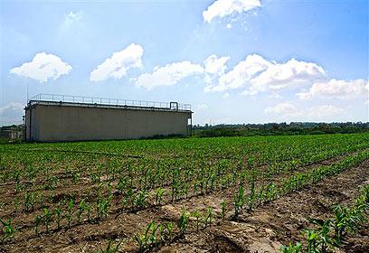 """השדות החקלאיים על רקע המתקן (צילום: טכנוגקפיקס בע""""מ - יניב שוורץ) (צילום: טכנוגקפיקס בע"""