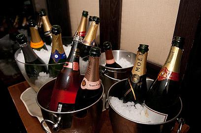 מי מתוקה יותר ומי חמצמצה יותר? השמפניות שומרות על מזג קר בשמפניירות (צילום: ירון ברנר) (צילום: ירון ברנר)