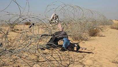 רבות מקורבנות הסחר נשים מאריתריאה שמוברחות דרך סיני (צילום: רועי עידן) (צילום: רועי עידן)
