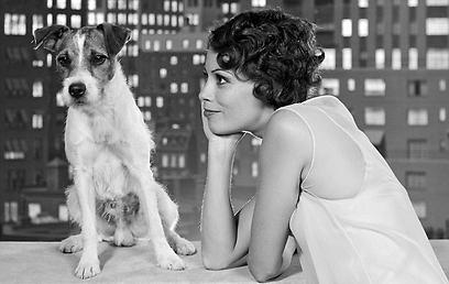 ברניס בז'ו והכלב אוגי. מי גונב את ההצגה? ()
