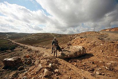 מעדיפים לעשות את הדרך בחמור, מאשר לעבור ליד המאחז (צילום: גיל יוחנן) (צילום: גיל יוחנן)