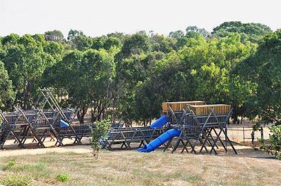 """בעבר היה זה """"פרדס גולדברג"""", כיום פארק הירקון (צילום: רונית סבירסקי) (צילום: רונית סבירסקי)"""