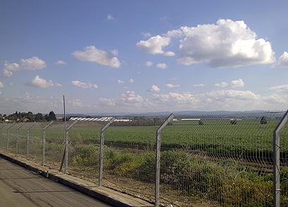 """""""בהתחלה חשבנו שזה מטוס ריסוס"""". ליד מקום ההתרסקות (צילום: חזי אייזן) (צילום: חזי אייזן)"""