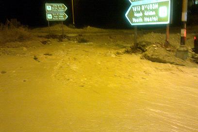 שיטפון בנחל דוד שבדרום (צילום: מירב אילון)