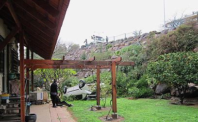 אורח בלתי רצוי בחצר. הרכב (צילום: אלי שור) (צילום: אלי שור)