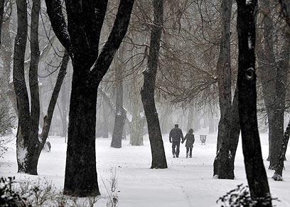צועדים בפארק בבודפשט, בירת הונגריה (צילום: AP) (צילום: AP)