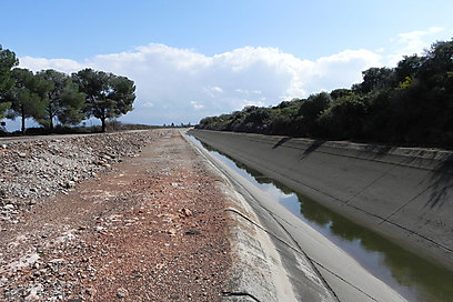 """17 ק""""מ של זרימה באוויר הפתוח. תעלת הירדן (צילום: זיו ריינשטיין) (צילום: זיו ריינשטיין)"""