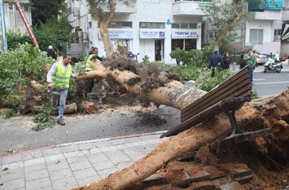 הכביש נחסם לתנועה. רחוב קינג ג'ורג' בתל-אביב (צילום: מוטי קמחי)