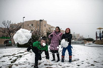 משחקים בשלג בבירה הלבנה (צילום: נועם מושקוביץ) (צילום: נועם מושקוביץ)