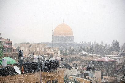 סוף סוף! שלג על עירי (צילום: נועם מושקוביץ) (צילום: נועם מושקוביץ)