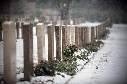 בית הקברות הבריטי, באווירה אירופית (צילום: נועם מושקוביץ) (צילום: נועם מושקוביץ)
