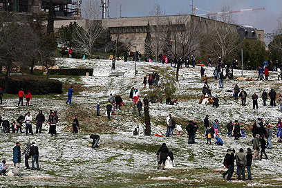 נהנים מהשלג בגן סאקר, ירושלים (צילום: גיל יוחנן) (צילום: גיל יוחנן)