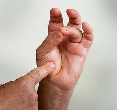 אגודל וקמיצה - מידת עשייה וול דאן (צילום: ירון ברנר) (צילום: ירון ברנר)