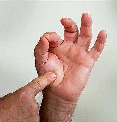 אגודל ואצבע - מידת עשייה רייר (צילום: ירון ברנר) (צילום: ירון ברנר)
