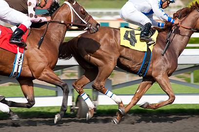 כדי להתפרנס נאלץ אוואנס להתחרות מול סוסים (צילום: AP) (צילום: AP)