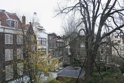 בית אנה פרנק. עץ הערמונים המוכר כבר לא קיים שם (צילום: AP) (צילום: AP)