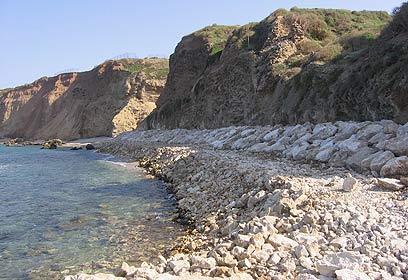 אפולוניה. קיר סלעים למרגלות המצוק (באדיבות עיריית הרצליה) (באדיבות עיריית הרצליה)