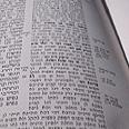 """אנציקלופדיה ynet, רבי יוחנן. צילום: מיכה דומאן. באדיבות מרכז חב""""ד ת""""א"""