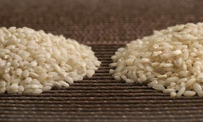 יש ממנו שלל סוגים. אורז עגול (צילום: אסף רונן) (צילום: אסף רונן)