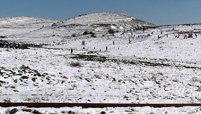 יפה בכל עונה. הר בנטל (צילום: אורן יהודה) (צילום: אורן יהודה)