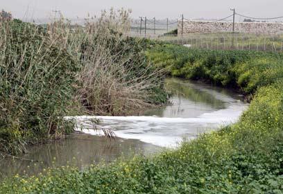 שפכים זורמים חופשי ומזהמים את הטבע (צילום: עידו ארז) (צילום: עידו ארז)