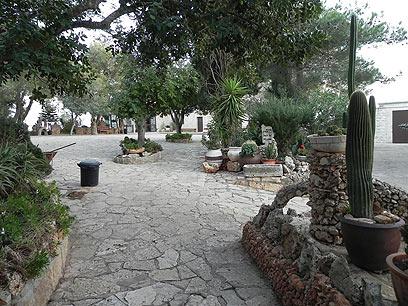 חצר המנזר במוחרקה  (צילום: זיו ריינשטיין) (צילום: זיו ריינשטיין)