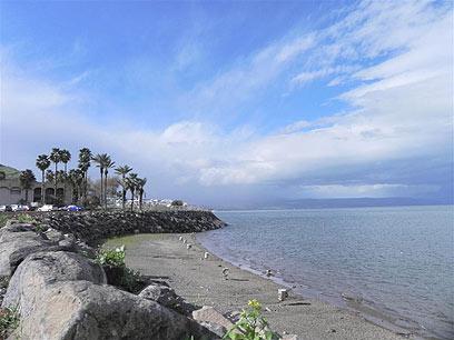 מיצגים יוקרנו על שפת האגם. הכנרת  (צילום: זיו ריינשטיין) (צילום: זיו ריינשטיין)