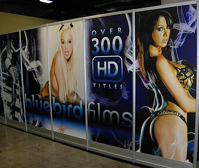 """""""הצרכנים לא ירכשו סרטי פורנו שבהם משתמשים בקונדומים"""" (צילום: עמי יופה) (צילום: עמי יופה)"""
