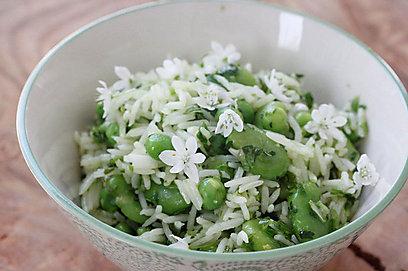 אורז עם פול, אפונה וירוקים (צילום: מיכל וקסמן) (צילום: מיכל וקסמן)