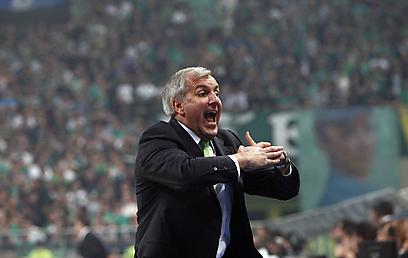 האיש, האגדה, התארים. ז'ליקו אוברדוביץ' (צילום:  AFP) (צילום:  AFP)
