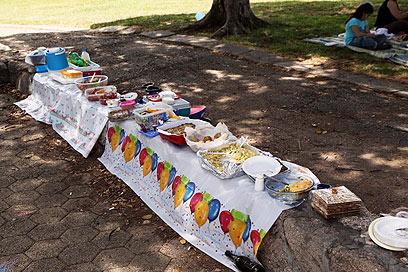 משתה מאורגן בפארק הירקון (צילום: מוטי קמחי) (צילום: מוטי קמחי)