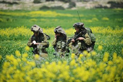 """מגיחים מבעד לגידולים. חיילי גדוד חרוב (צילום: דובר צה""""ל) (צילום: דובר צה"""