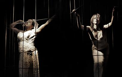 כלות בכלוב (צילום: גיא מרגלית) (צילום: גיא מרגלית)