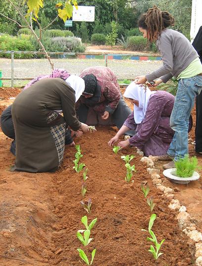נשים ותלמידות בפרוייקט אלזהראא  (צילום: ארגון חיים וסביבה)
