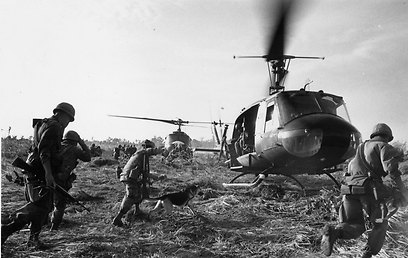 """כלבים עם חיילי צבא ארה""""ב במלחמת וויטנאם (צילום: gettyimages) (צילום: gettyimages)"""