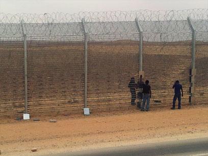 Fence on southern border (Photo: Yoav Zitun)